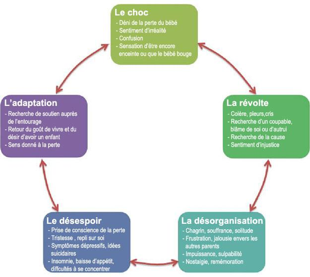 différentes phases du deuil